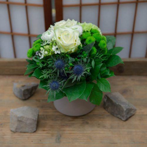 Blumen und Pflanzen – Marita Gallon
